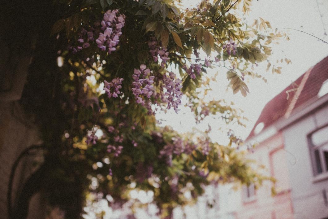 becky-ryan-photography-alternative-wedding-photography_8680
